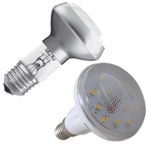 Spotlight Reflector Bulbs