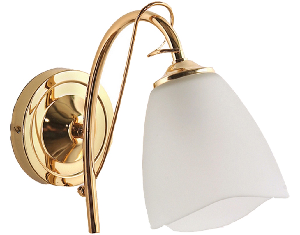 Single wall lights from easy lighting oaks lighting turin single wall light polished brass 41061 bp mozeypictures Images